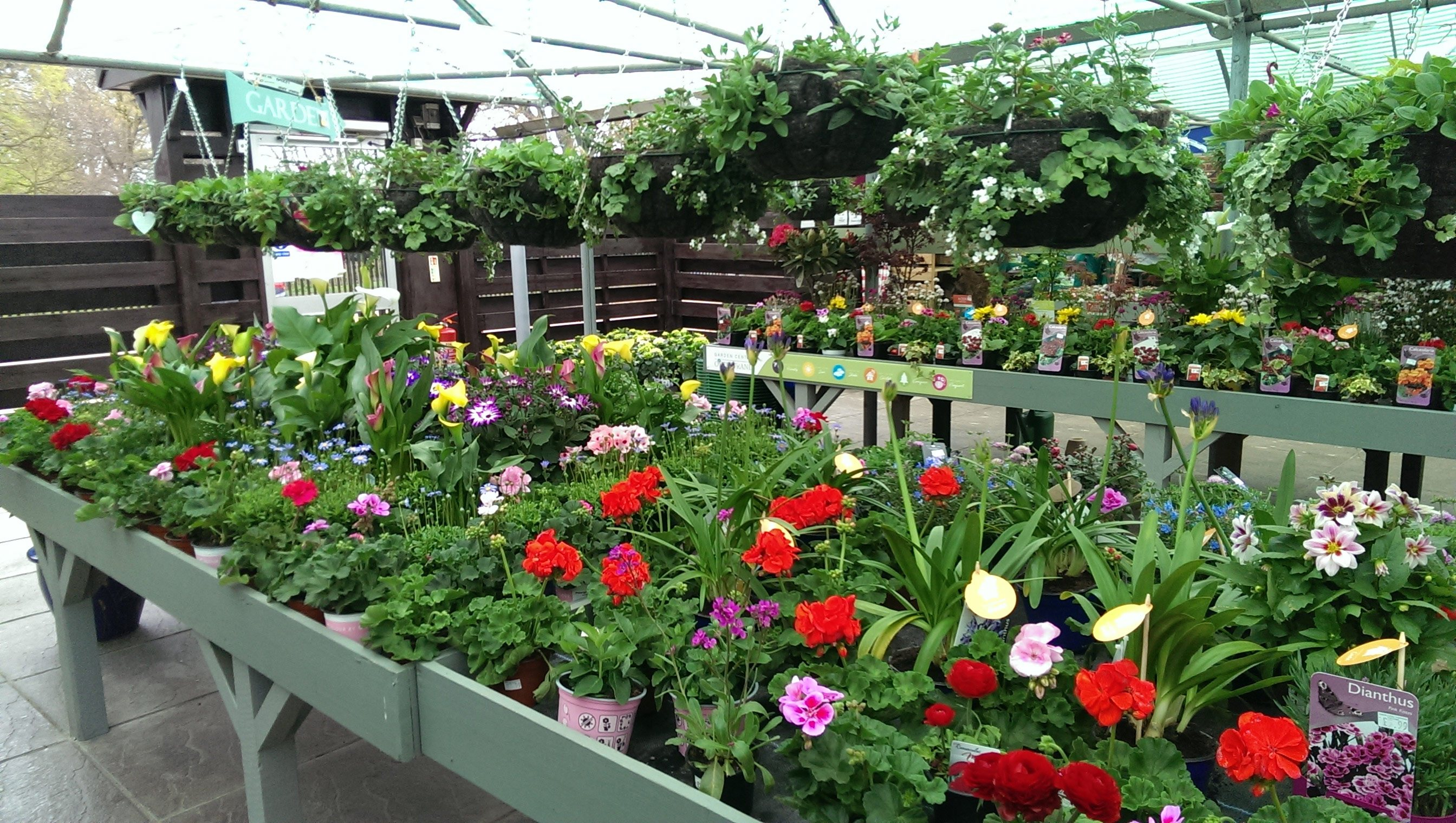 Our garden centre gallery garden centre overstrand for Garden centre